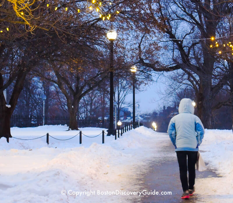 Boston Common in late afternoon in February