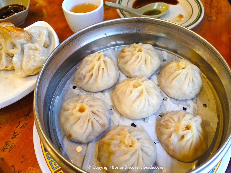 Gourmet Dumpling House in Boston's Chinatown neighborhood