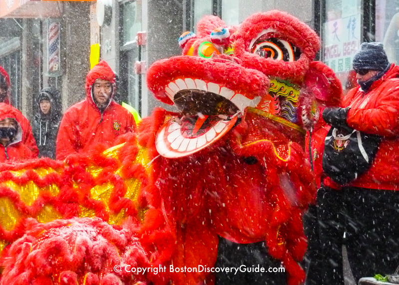 Lion Dance in a snowstorm - part of the Chinese New Year celebration in Boston's Chinatown