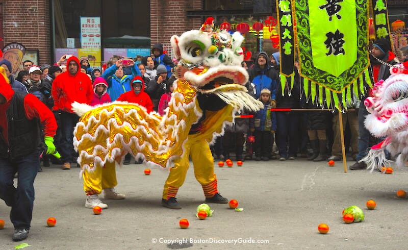 Boston Chinese New Year Parade - Lion Dance