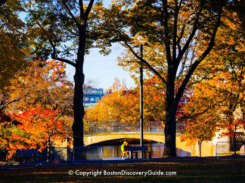 Boston's Esplanade in November