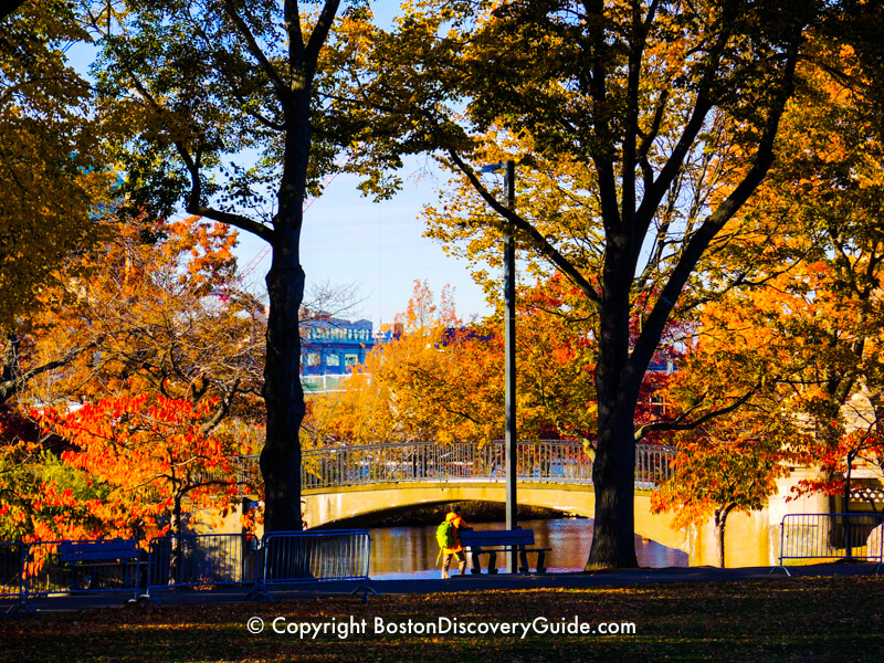Boston's Esplanade in November