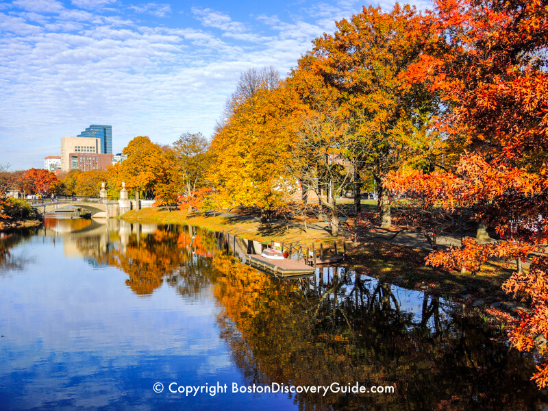 Fall color along Boston's Esplanade and the Charles River