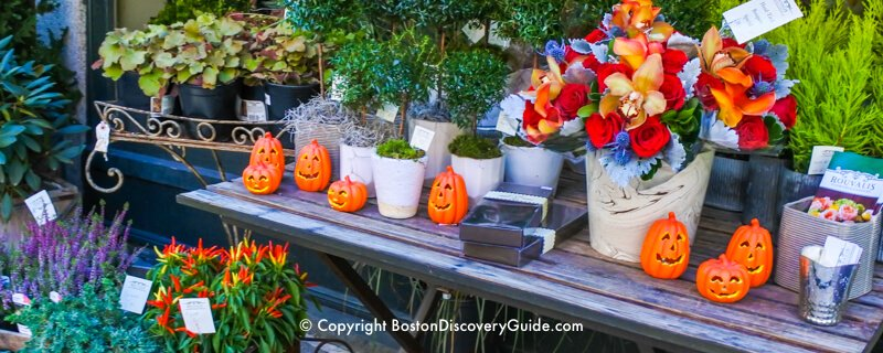 Events and things to do in Boston in October