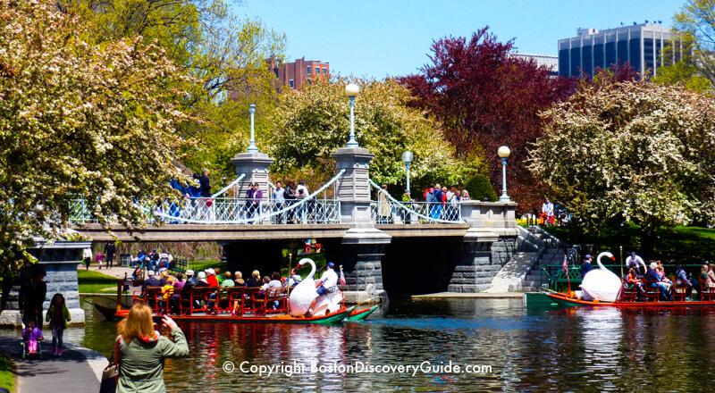 Boston 39 S Public Garden 10 Top Attractions Boston Discovery Guide