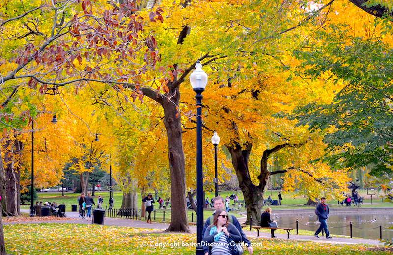 Boston's Public Garden in October - across from the Boston Park Plaza Hotel