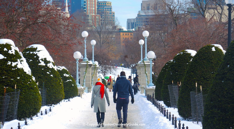 Winter walking tour of Boston: Public Garden in the snow