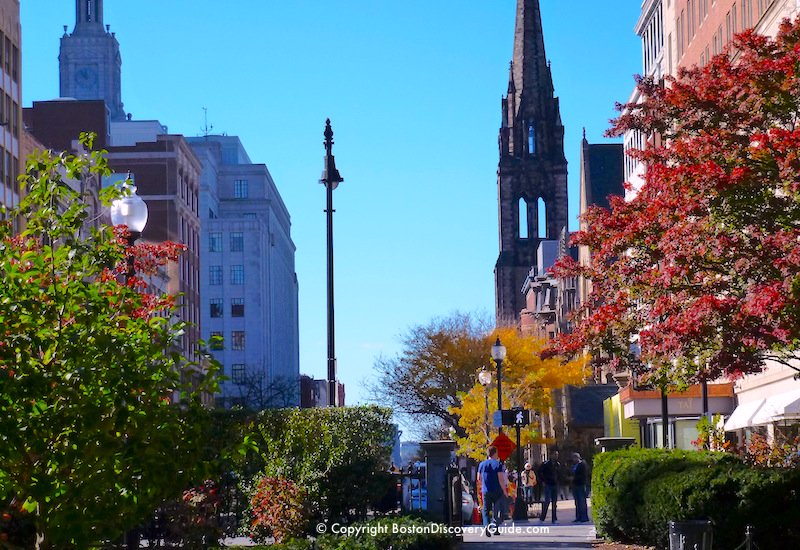 Newbury Street and the Taj Hotel, viewed from Boston's Public Garden
