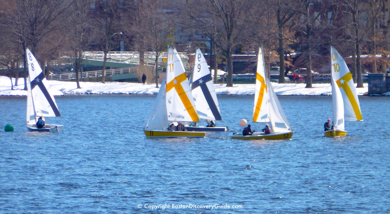 Winter frostbite sailing on the Charles River, with Boston's Esplanade in the background