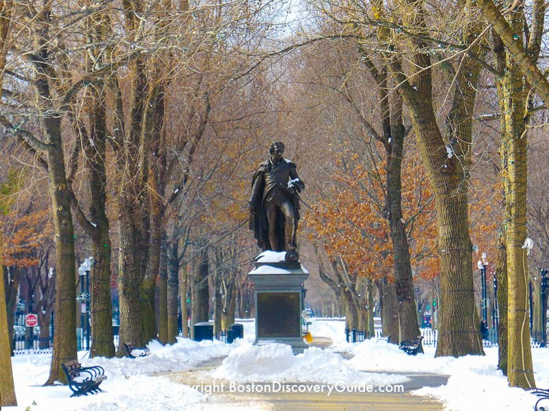 Winter walking tour of Boston: Commonwealth Avenue Mall