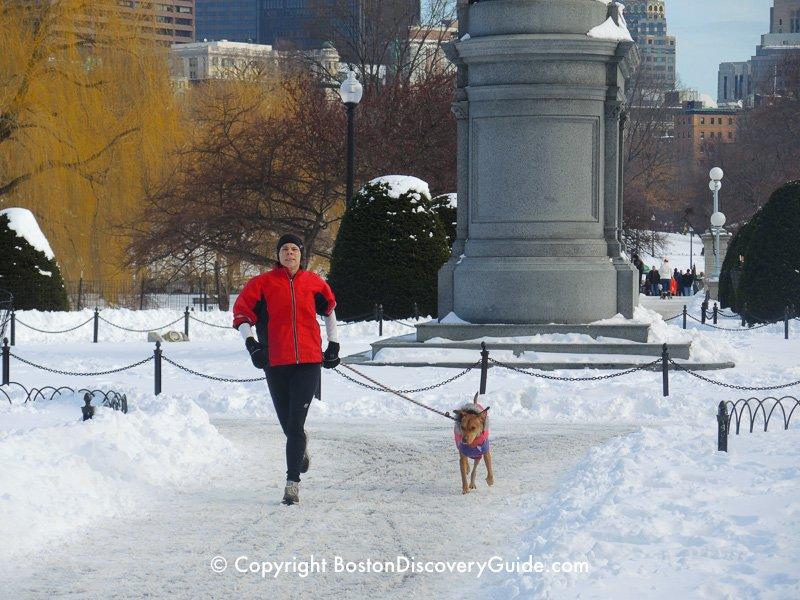 Winter walking tour of Boston: Public Garden