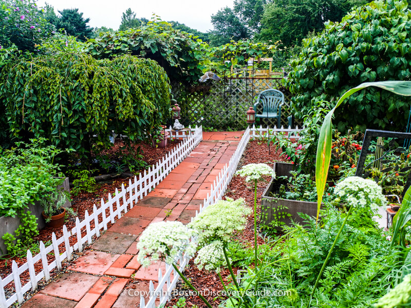 Although this garden contains a couple of beautiful small specimum trees such as the dwarf weeping cherry on the left, the raised beds contain a variey of herbs and vegetables, such as the tomatoes in the bed on the right