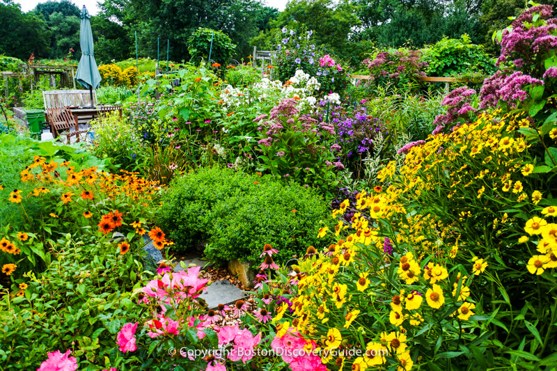 This garden, which seems to be a double-sized plot, contains masses of flowers, a stone walk, and patio seating complete with an umbrella
