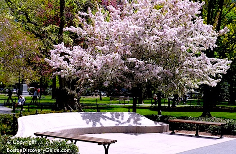 Garden of Remembrance, 9/11 memorial in Boston's Public Garden