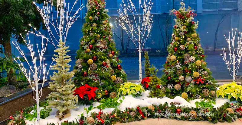Holiday greenery from Cityscapes