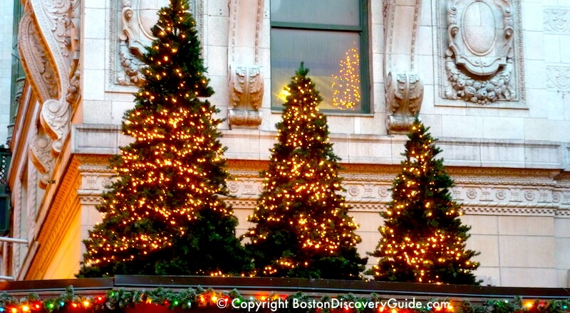 holiday trees in downtown boston in december - African American Outdoor Christmas Decorations