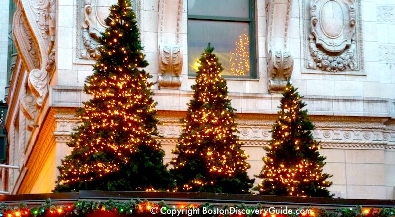 holiday trees in downtown boston in december - Disney Princess Outdoor Christmas Decorations