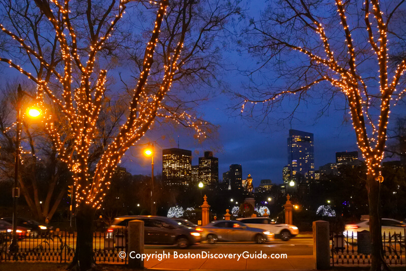 Golden Christmas lights on Commonwealth Avenue Mall frame lighted buildings in Downtown Boston