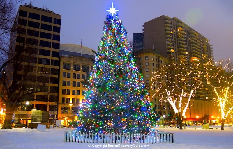 christmas tree on boston common gift from nova scotia lighted