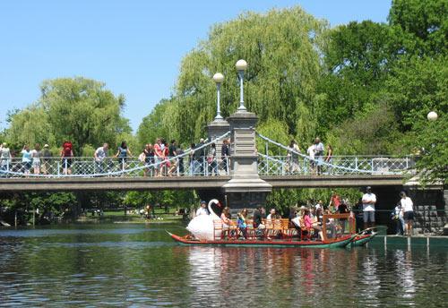 Boston Swan boats pass under the Public Garden's suspension bridge