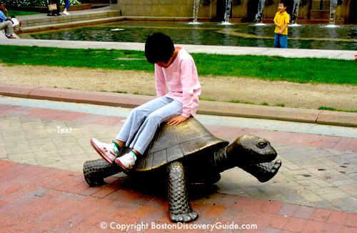 Photo of tortoise in Nancy Schon's
