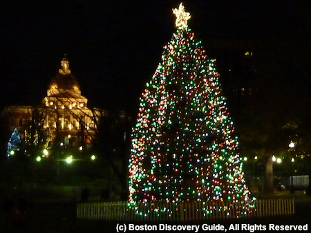Photo of Christmas Tree on Boston Common