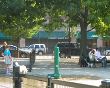 Dog Park in Boston's South End
