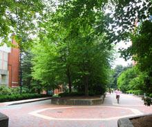 Southwest Corridor Park - Boston's South End