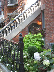Wrought Iron Railings - Bostons South End