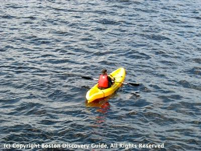 Kayak in Charles River, photographed from Mass Ave Bridge